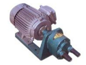 S-10 S-type gear pump